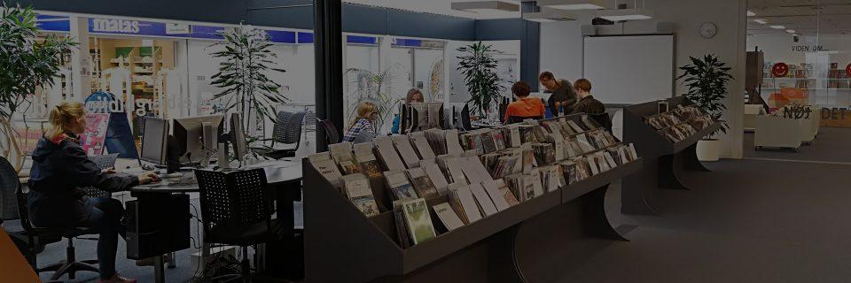 Sædding Bibliotek